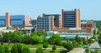 Fast Facts University Of Arkansas For Medical Sciences